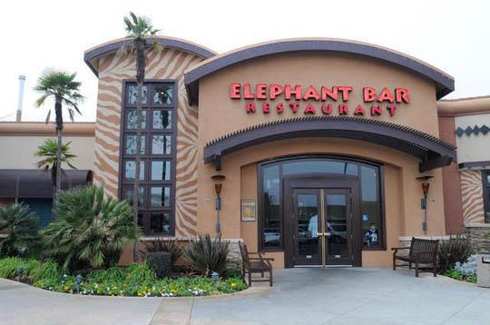 The Elephant Restaurant & Bar